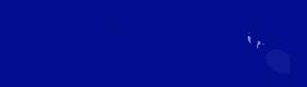 MSH-5552303-DI